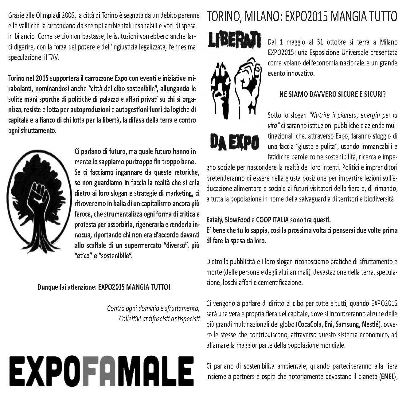 noexpo_torino_pieghevole_Page_1