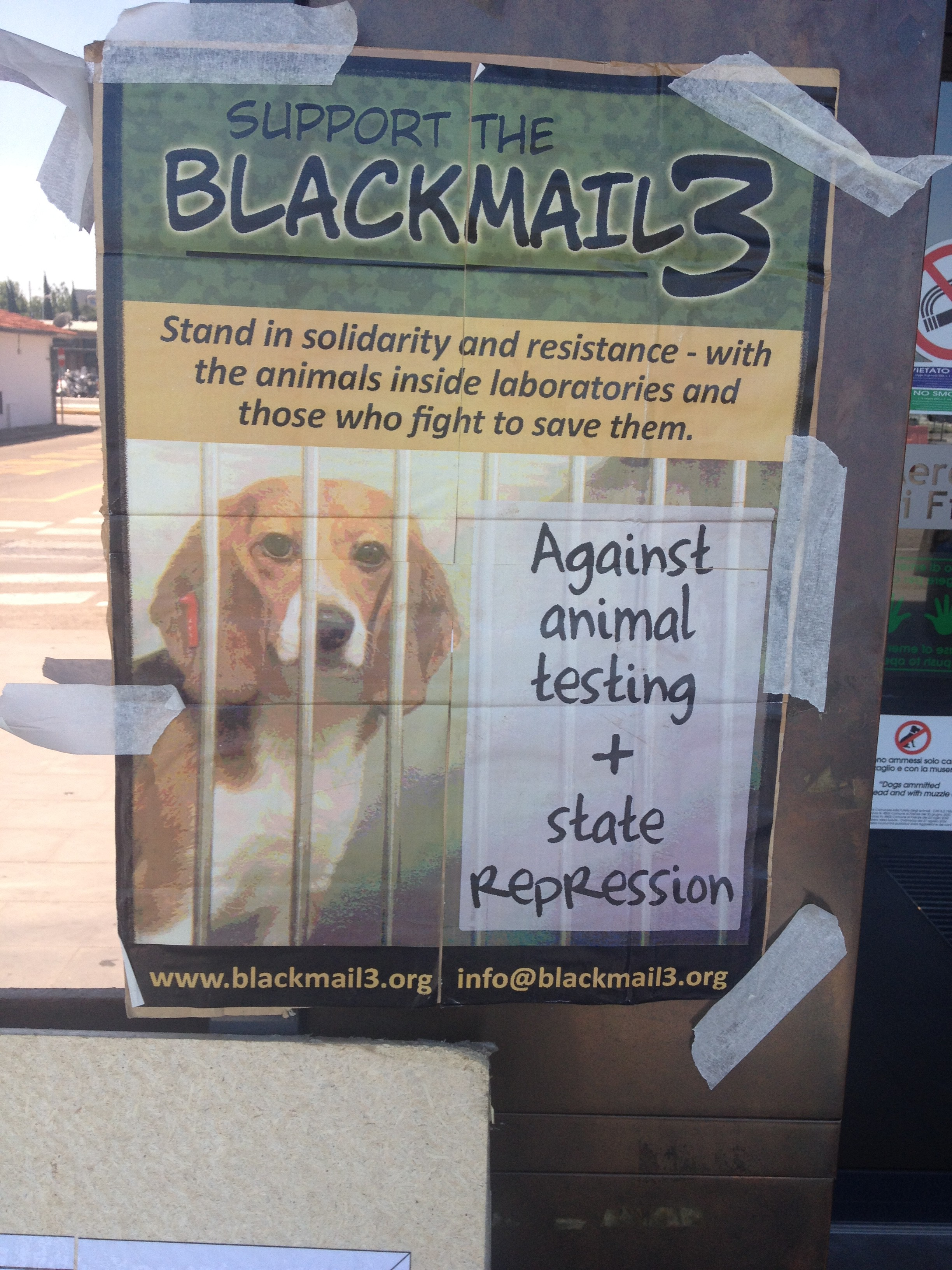 Solidarietà con chi lotta per la liberazione animale, umana e della terra, contro la repressione di stati e governi